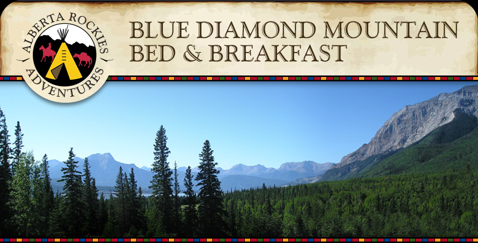Blue Diamond Bed and Breakfast Alberta Rockies Adventures