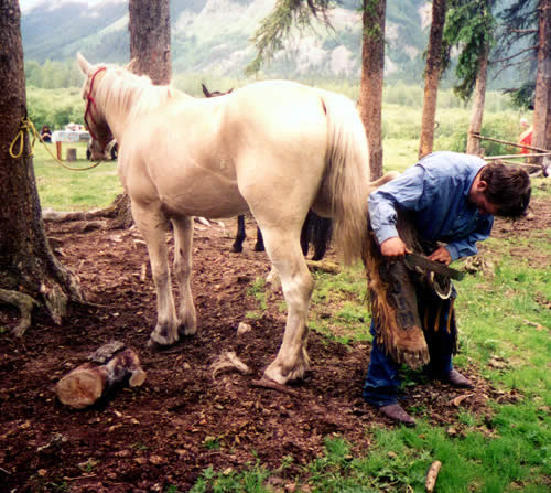 Cody Leonard shoeing a horse