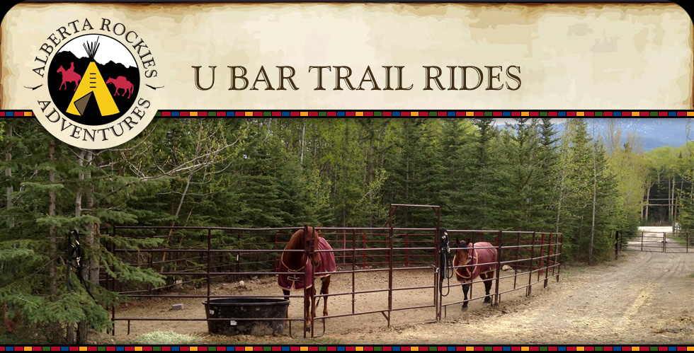 U Bar Trail Rides Alberta Rockies Adventures